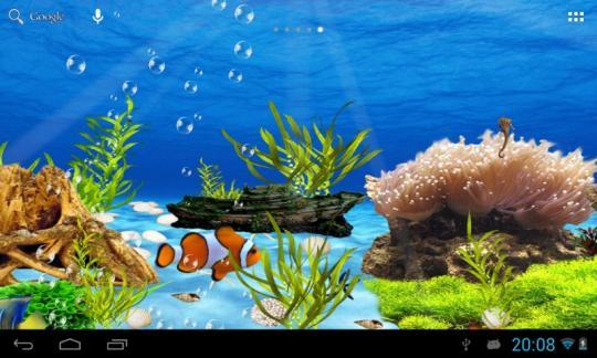 壁纸 海底 海底世界 海洋馆 水草 水生植物 水族馆 540_324