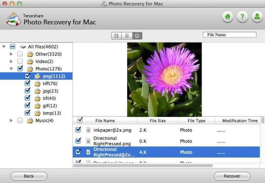 X11 Mac Download